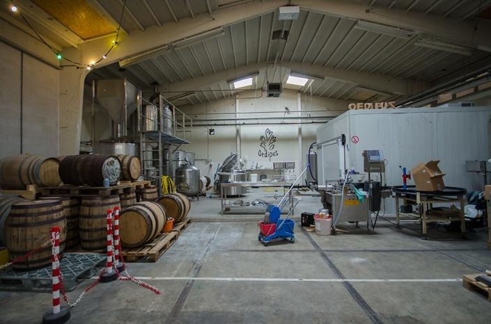 oedipus_brewery.jpg